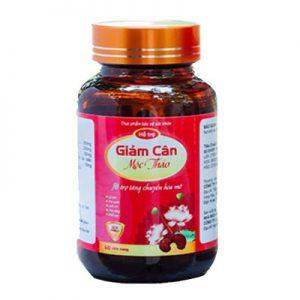Giam-can-Moc-Thao-logo