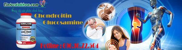 Glucosamine-HCL--baner-4